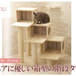シニア猫ちゃんに優しいキャットタワー「Mauタワー アントレ」(おすすめキャットタワー)