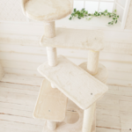 猫ちゃんが上りやすいらせん型タワー「Mauタワーアンプルール」(おすすめのキャットタワー)