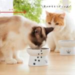 猫ちゃんのごはんがすすむちょうどいい高さの脚付きボウル『ハッピーダイニング(フードボウル・ウォーターボウル・トレー』