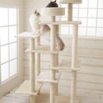 大型・シニア・多頭OKのオールマイティータワー「 Mauタワーリアン」(おすすめのキャットタワー)