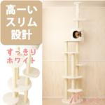 高い所が好きな猫ちゃんに すっきりスリムなシンプルタワー「Mauタワー トルテ」(おすすめキャットタワー)